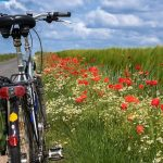 French Cycling Holidays – Where To Go?