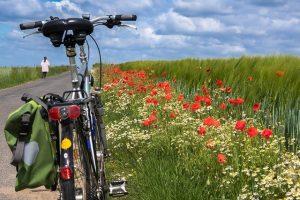 cycling holiday France